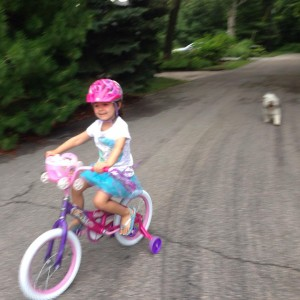 This princess just got her first big girl bike today!hellip